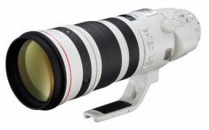 Canon EF200-400mm f/4L IS USM EXTENDER 1.4x lens