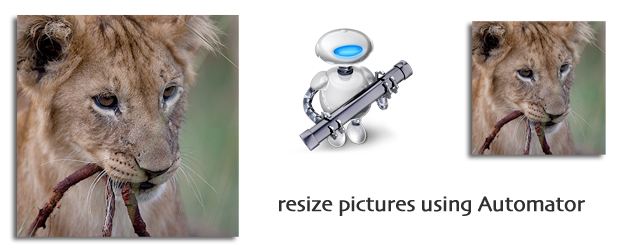 Resize your pictures with Automator