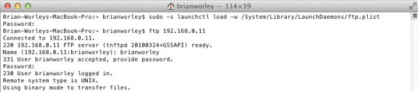 Terminal and commands to activate and test the ftp server is working