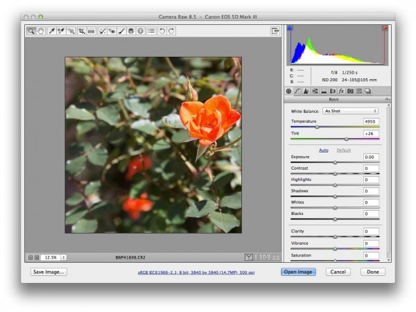 photoshop crop