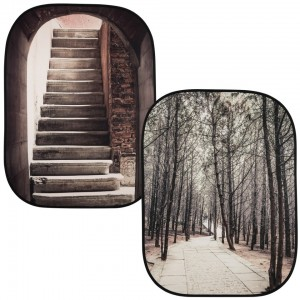 Lastolite by manfrotto perspective background Stone Steps Winter Trees LL LB5741
