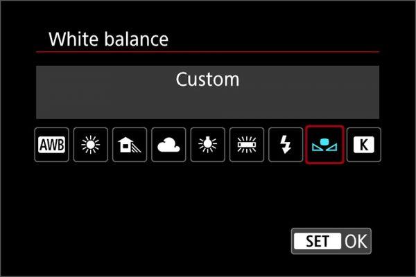 custom white balance
