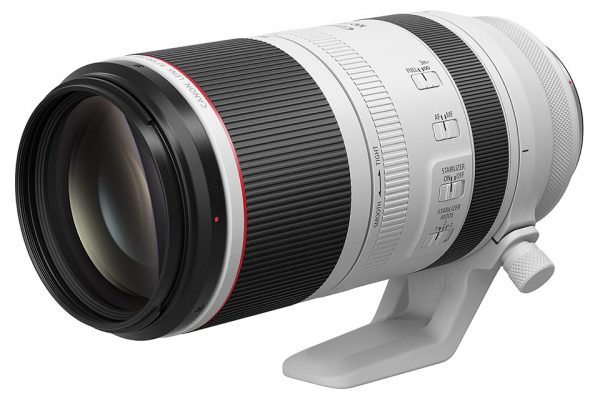 Canon RF100-500mm 4.5-7.1 L IS USM
