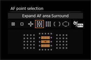 AF areas_EOS 7D2