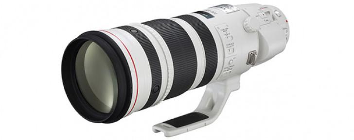 Canon EF 200-400mm f4L IS USM Extender 1.4x lens