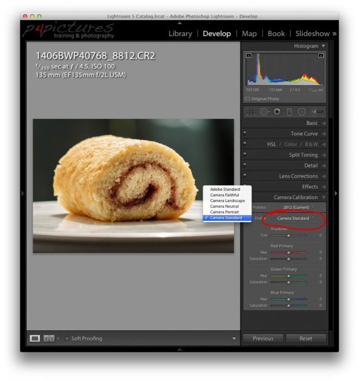 RAW images in Lightroom
